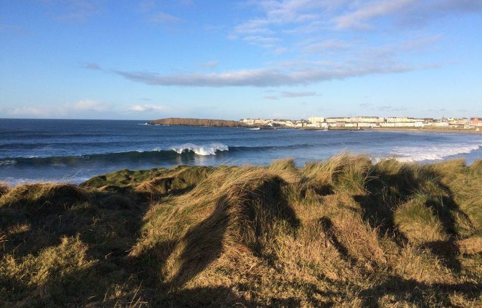 Image of coast and dunes